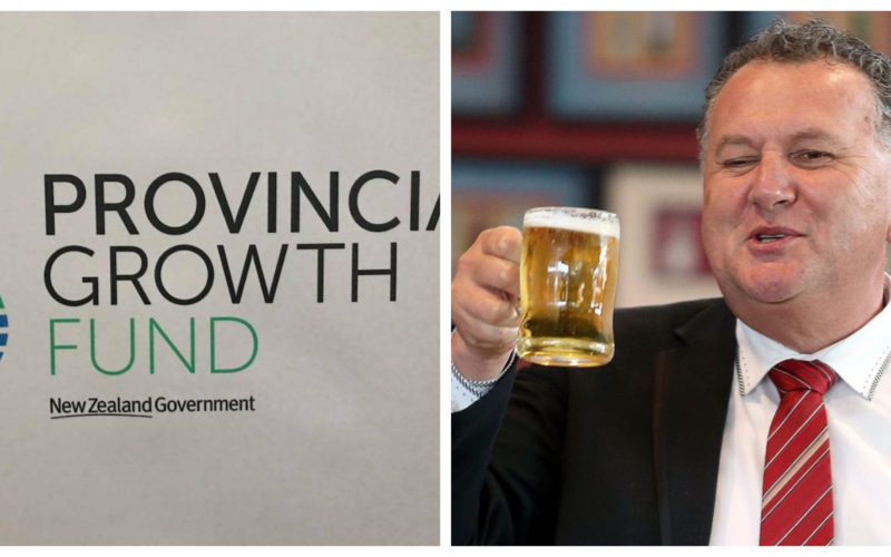 The Provincial Growth Fund logo and Shane Jones