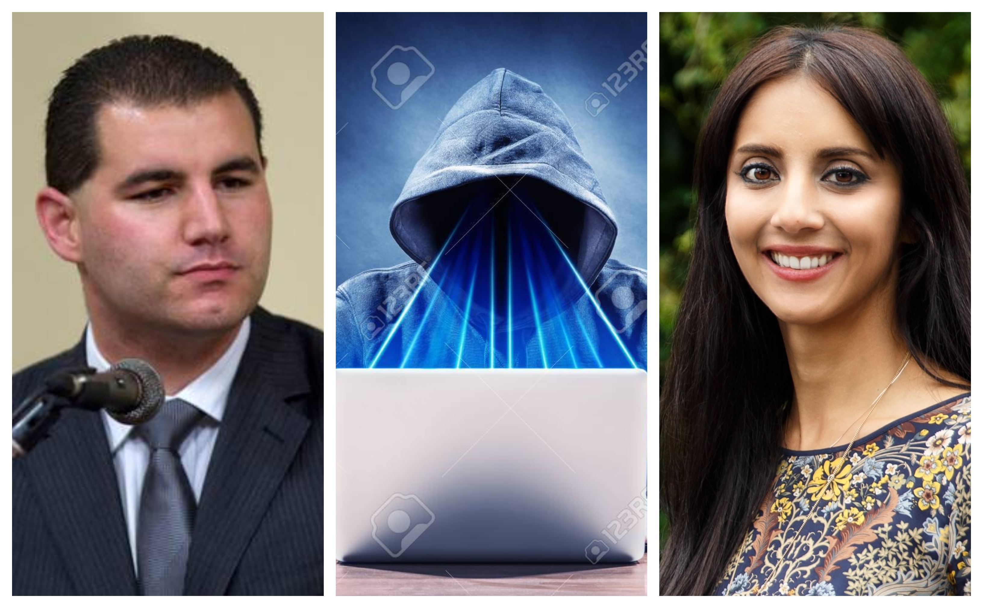 Jami-Lee Ross, Golriz Ghahraman on electoral reform
