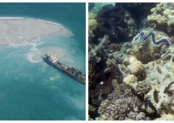 China artificial islands in Spratlys and Philippine giant clams